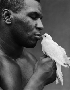Mike Tyson VIII, Interview