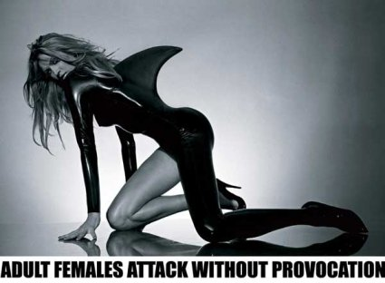 Adult Females Attack Without Provocation, 2004